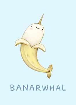 Banarwhal