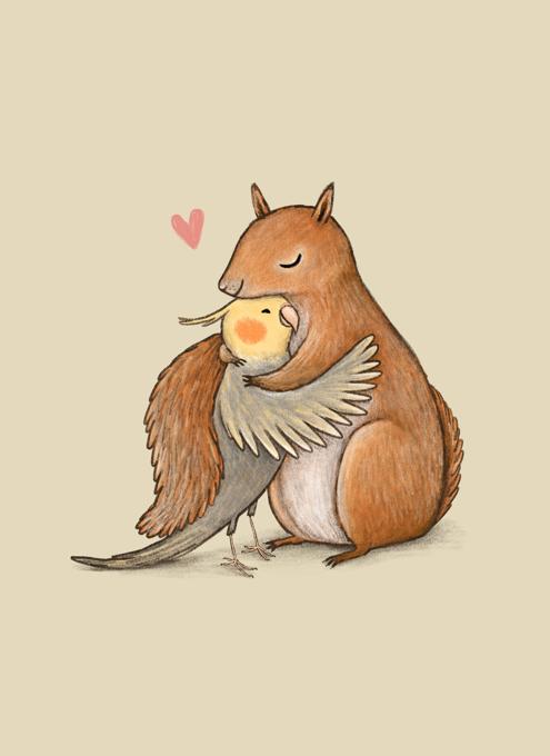 Cockatiel And Squirrel