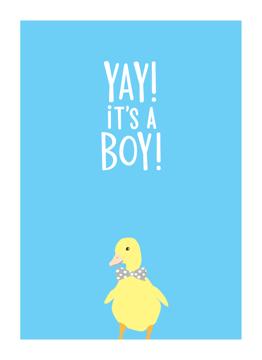 Boy Duck