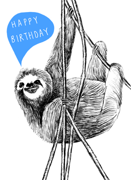 Birthday Sloth