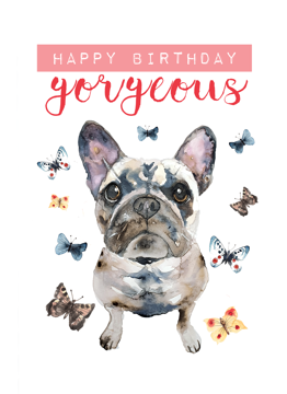 French Bulldog Happy Birthday Gorgeous