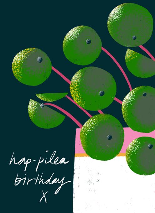 Hap-Pilea Birthday!