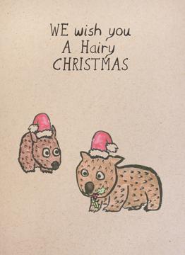 Hairy Wombat