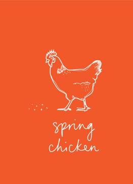 Spring Chicken White