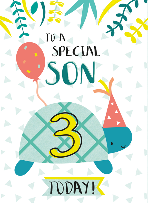 Son Happy Third Birthday Tortoise Card