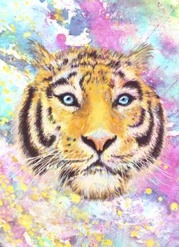 Motley Tiger