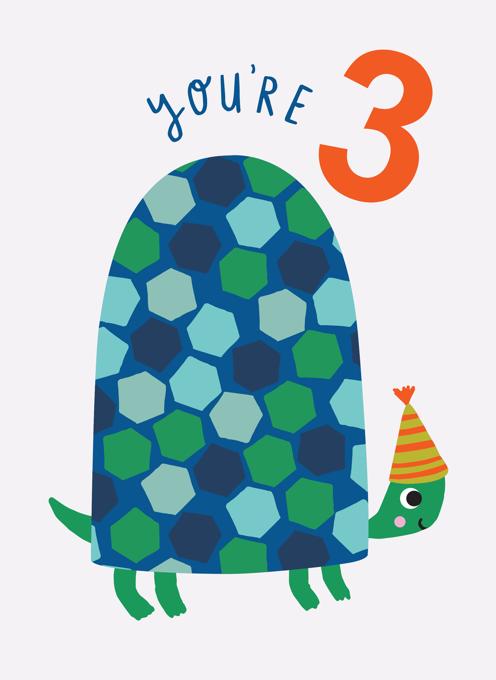 Turtle 3rd Birthday