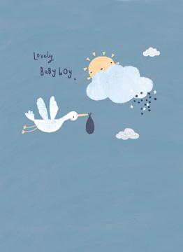 Baby Boy Stork
