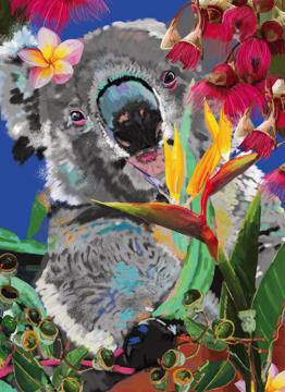 Ivy Koala