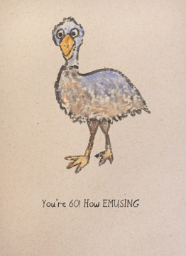You're 60 How Emusing