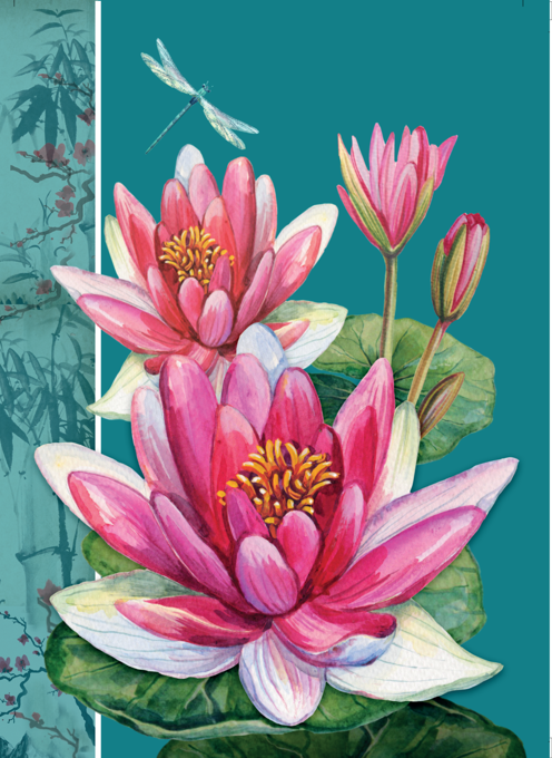 Lily Illustrated Floral Card