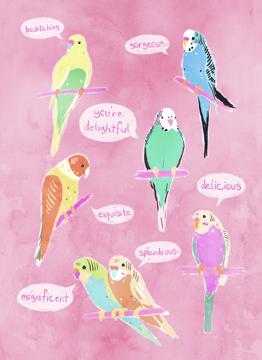 Birds Of Endearment