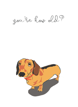 Dachshund You're How Old?