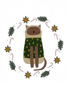 Cat in Christmas Jumper