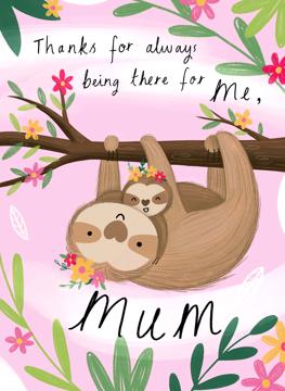 Mum And Baby Sloth