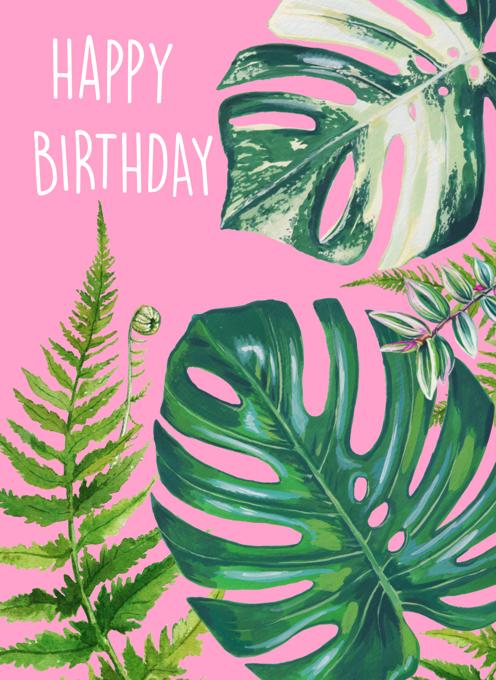 Houseplants Birthday Card