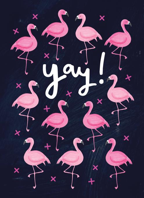 Yay Flamingos