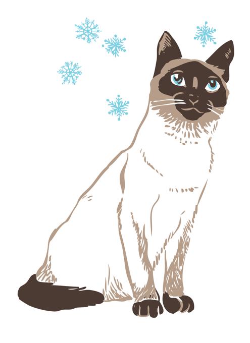 Siamese Snowflake