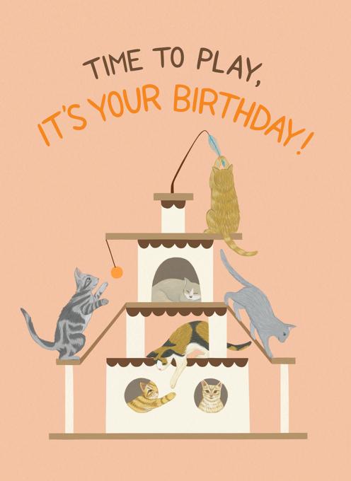 Playful Cats Birthday