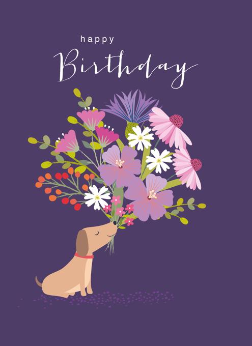 Birthday Sausage Dog