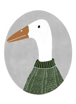 Duck in Jumper