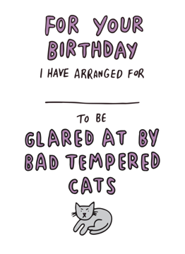 Bad Tempered Cats
