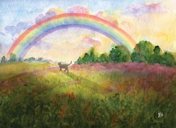 Rainbow Bridge Kitty