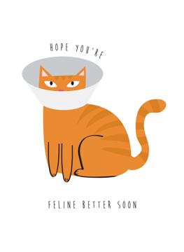 Hope You're Feline Better Soon