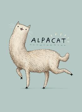 Alpacat