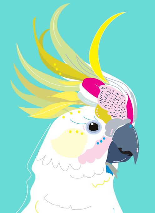 Crazy Cockatoo Card