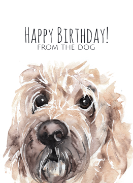 Goldendoodle Happy Birthday From The Dog