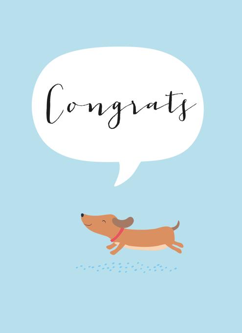 Congrats Dog