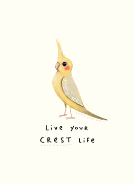 Live Your Crest Life