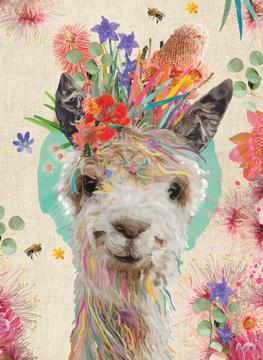 Native Grace - Llama