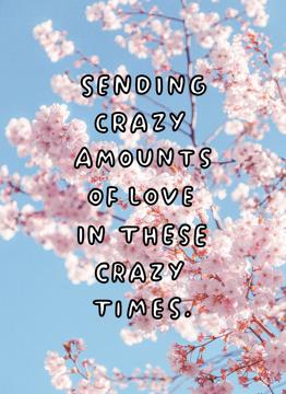 Crazy Amounts Of Love