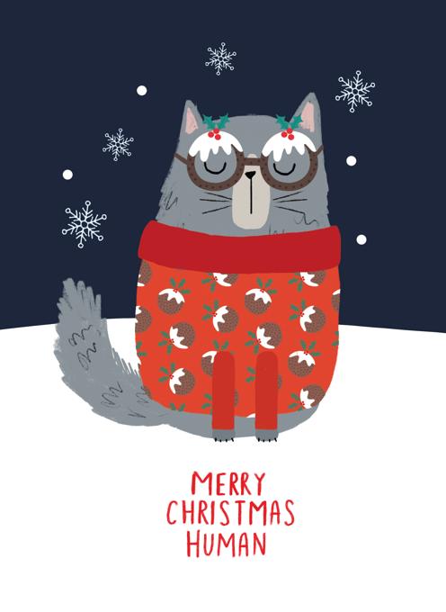 Flurry Grumpy Cat Christmas
