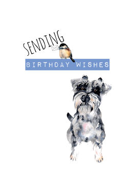 Schnauzer Sending Birthday Wishes