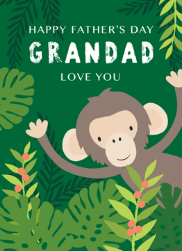 Grandad Chimp