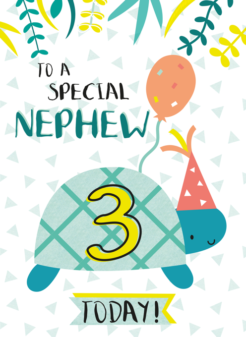 Nephew Happy Third Birthday Tortoise Card
