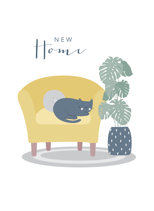 New Home Cat